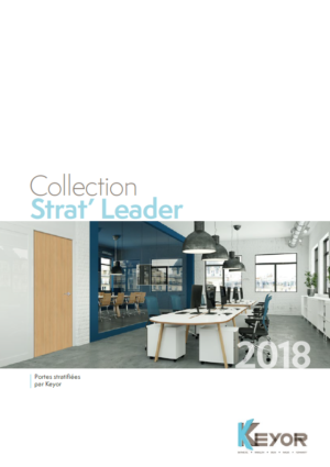 Nuanciers portes stratifiées – Collection Strat' Leader