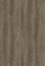 Chene Nebraska gris